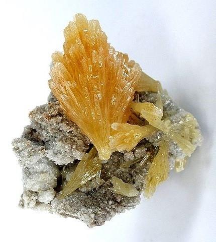 Кластер полупрозрачных золотых кристаллов миметита