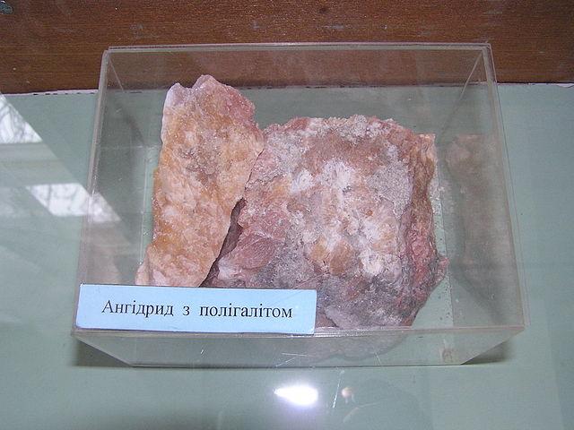 Полигалит