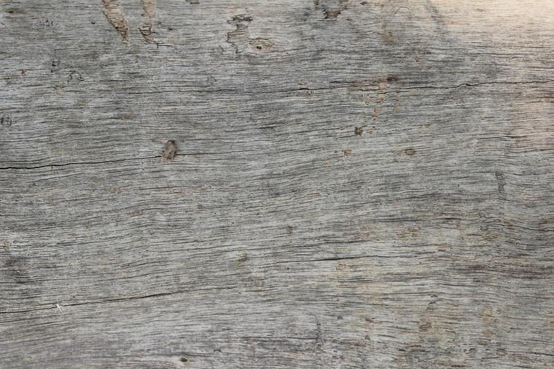 Каменный пол Стоун Флор — мировой тренд 2019